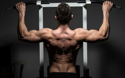 8 Simple Steps Men May Take to Quickly Transition from Scrawny to Brawny – Part 4