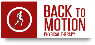 Backtomotion Logo